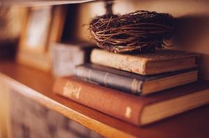 book-shelf-349934_1280